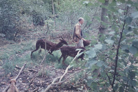 Photograph of Andrew Darke with sculpture Deer/ Searcher