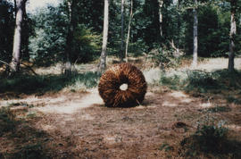 Photograph of sculpture Bracken Ring