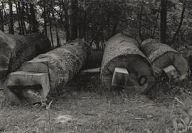 Photograph of components of the sculpture Place/ Giant's Chair before construction