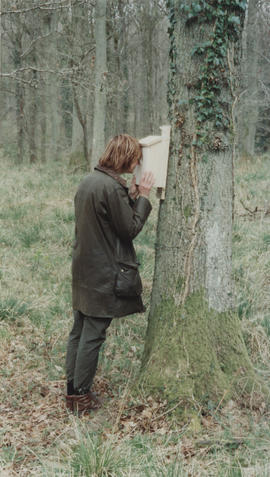 Photograph of Lesley Greene looking into sculpture Life Cycle