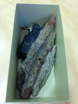 Original wood and piece of charcoaled wood from Place/ Giant's Chair