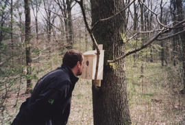 Photograph of Andy Fryers of Forest Enterprise looking into sculpture Life Cycle